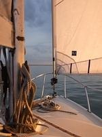 Sailing round Sheppey - evening light in the foresail