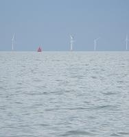 Sailing round Sheppey - red sails by the windfarm